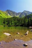 Lago di montagna di slovacchia - rohacske plesa, tatra ovest — Foto Stock