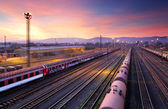 Cargo freight train railroad station — Stock Photo