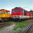 Trains in depot — Stock Photo #39893055