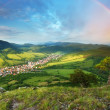 Mountain forest with rainbow — Stockfoto