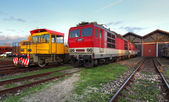 Trains in depot — Stock Photo