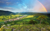 Mountain forest with rainbow — Stock Photo