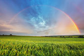 Rainbow over spring field — Stock Photo