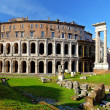 Постер, плакат: Teatro di Marcello Theatre of Marcellus Rome Italy