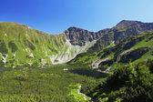 Slovakia mountain lake - Rohacske plesa, West Tatras — Stock Photo