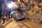 鉄道鉱山トンネル — ストック写真
