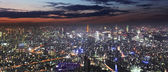 Tokyo skyline panorama at night from Tokyo Tower, Japan — Stock Photo