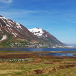 Iceland landspace with fjord and mountain — Stock Photo #46544357