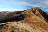 Montagne automne — Photo