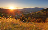 Summer landscape with village, Slovakia — Stock Photo