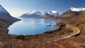 Mountain and fjord in Norway - Senja — Stock Photo