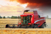 Wheat field with Harvester machine — Stock Photo