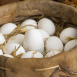 Organic eggs in a basket — Stock Photo