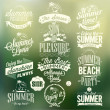 Retro Elements For Summer Calligraphic Designs — Stock Photo #28461363
