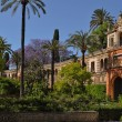 Stock Photo: Garden of Real Alcazar, Seville, Spain
