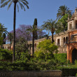 Garden of Real Alcazar, Seville, Spain — Stock Photo