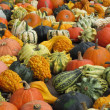 Stockfoto: Pumpkin parade