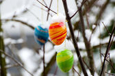Easter eggs with snow cover — Foto Stock