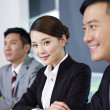 Asian business — Stock Photo #26121703