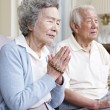 Senior asian couple — Stock Photo #26640379