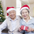 Senior Couple with Christmas Hats — Stock Photo #34650431