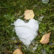 Snow heart on green grass — Stock Photo