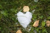Snow heart on green grass — Stock Photo