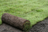 Rolling lawn — Stock Photo