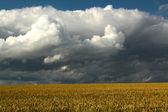špatné počasí — Stock fotografie