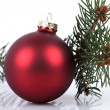 Fir tree with red ball — Foto Stock
