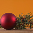 Red ball on fir branch — Stok fotoğraf