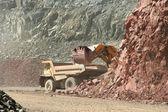 Escavatore carichi discarica — Foto Stock