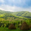 Stock Photo: Beautiful view with three hayricks in mountains. Carpathian. Ukraine.