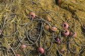 View of fishing net. Marine background. — Stock Photo