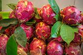 Fruta del dragón en el mercado — Foto de Stock
