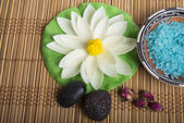 Spa and wellness setting with natural rosebuds and stones. — Stock Photo