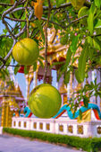Fruit on a tree branch and Architectural elements of  Wat Kaeo Manee Si Mahathat, Thailand — Stock Photo