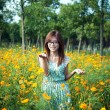 Young girl in a flower field — Stock Photo
