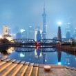 Beautiful shanghai skyline at night,China — Stock Photo