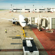 The plane at the airport on loading — Stock Photo #36059795