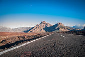 Tenerife, Canary Islands, Spain — Stock Photo