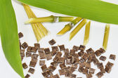 Bamboo, bamboo-leaves, fibers and biopolymer — Stock Photo
