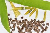 Bamboo, bamboo-leaves, fibers and biopolymer — Stock Photo