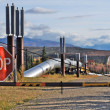 Trans-Alaska oil pipeline with stop sign and closed gate, US — Stock Photo