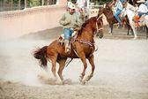 墨西哥 charros 骑士在跃马,tx,我们 — 图库照片