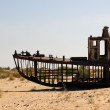 Destruction of the ships - Aral Sea, Uzbekistan — Stock Photo #20945789