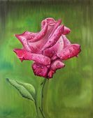 Oil painting - rose — Stock Photo