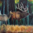 Dears in forest - oil painting — Stock Photo