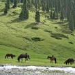Stock Photo: AshukashkSuu valley, Tien Shmountains, Kyrgyzstan