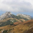 Giewont - Famous mountain in Polish Tatras with a cross on top — Stock Photo #33794657